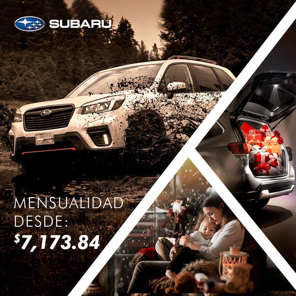 Subaru Montalvo 03